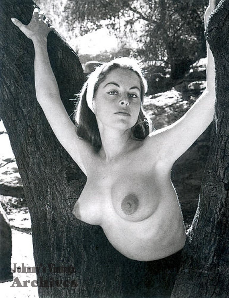 That interfere, Yvette vickers nude consider
